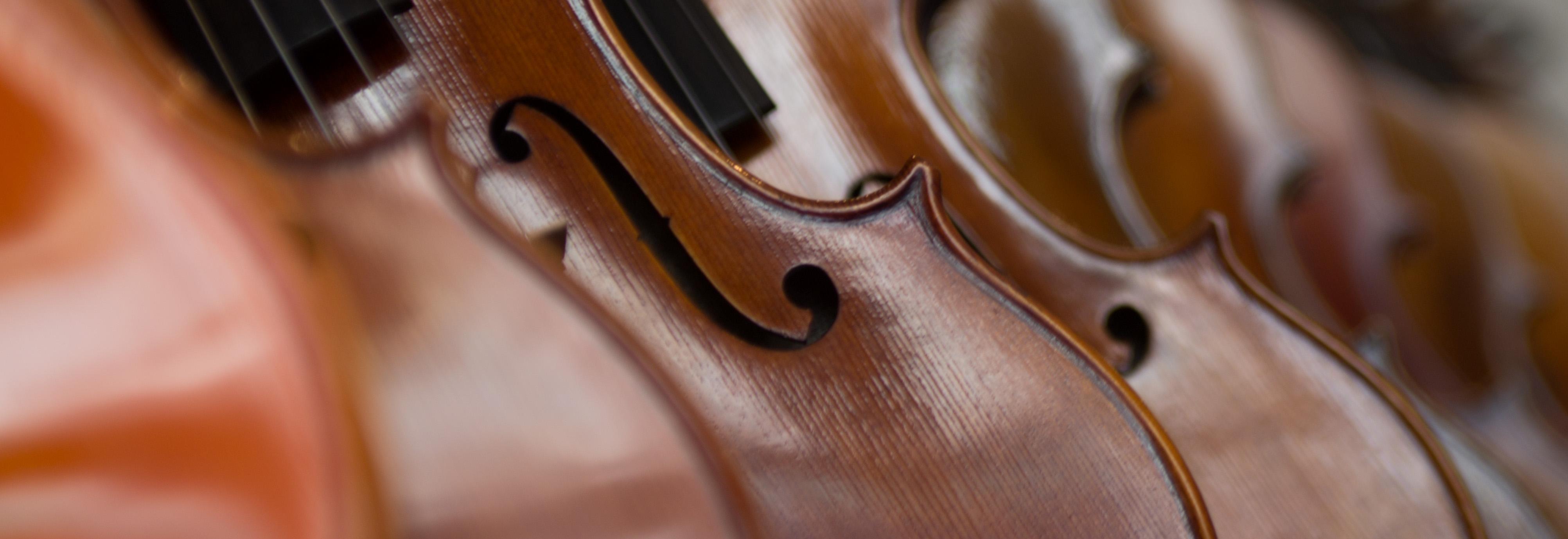 violini e corde milano